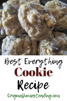 BEST EVERYTHING COOKIE RECIPE.....these have it all.....Chocolate Chips, Nuts, Peanut Butter, Oatmeal, Coconuts and Raisins! There is something for everyone in these super easy to make All Around Delicious Cookies!!! Plus, the recipe is a snap to remember.....