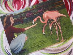 Vintage Florida postcard flamingos woman feeding by 3floridagirls