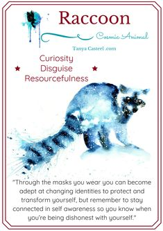 Raccoon symbolism, meaning, dreams, and watercolor painting by Tanya Casteel Spirit Animal Totem, Animal Spirit Guides, Animal Totems, Animal Meanings, Animal Symbolism, Power Animal, Animal Magic, Whats Your Spirit Animal, Spiritual Animal