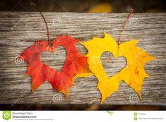 autumn-leaves-hearts-27161241.jpg (1300×957)