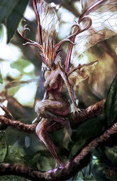 hadas del bosque