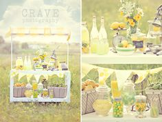 styled photo session lemonade stand
