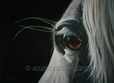 Horse Art Horse's Eye Horse Lover Abstract Horse by ArtByJulene