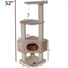 A 4-story cat house that offers the luxury of a private residence and two elevated viewing perches.