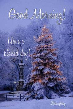Good Day Quotes, Good Morning Quotes, Quote Of The Day, Good Morning Inspiration, Good Afternoon, Have A Blessed Day, Happy Birthday, Trees, Joy