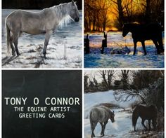 Tony O Connor Greeting Cards Horses In Snow, Christmas Horses, Horse Cards, Photo Editor Free, Dark Horse, 6 Packs, Greeting Cards, Artist, Image Editing
