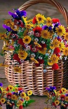 "╚►♚ Valentina ♚◄╗ on Twitter: ""🌹 Для всех, кто смотрит, читает и помнит меня!… "" Goeie More, Good Morning Wishes, World Of Color, Worksheets For Kids, Container Gardening, Beautiful Flowers, Basket, Table Decorations, Goeie Nag"