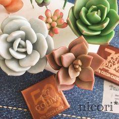 なな (@nicori0707)   Instagram photos and videos Gum Paste Flowers, Cactus Y Suculentas, Pasta Flexible, Clay Flowers, Air Dry Clay, Polymers, Ceramic Artists, Planting Succulents, Clay Art
