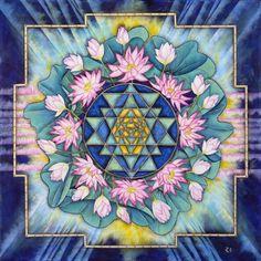 sacred lotus geometry yay!