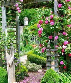 Rosenportal i med träspaljéer