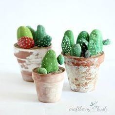 "Rock ""cacti"""