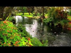 இڿڰۣ- MONA VALE GARDENS - CHRISTCHURCH - music by David Nevue - YouTube