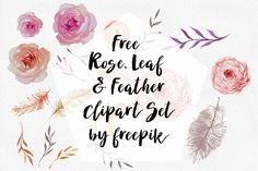 DLOLLEYS HELP: Free Rose, Leaf & Feather Clip art Set