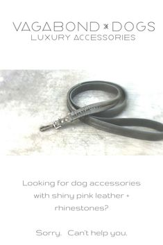 Dog accessories just got cool.  Designed by me! Cool Dog Collars, Dog Collars & Leashes, Leather Dog Collars, Training Your Puppy, Dog Training Tips, Furry Tails, Puppy Food, Collar And Leash, Dog Accessories
