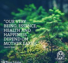Once we learn that our very being, essence, health and happiness depend on Mother Earth, we have no choice but to radically shift the way we treat her.  - David Suzuki -