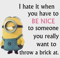 Image from http://www.lovethispic.com/uploaded_images/blogs/6-4315-4-Funny-Minion-Quotes-Of-The-Day-270.jpg.