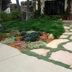 a lovely and turf-less front yard. I want my front yard to have NO grass