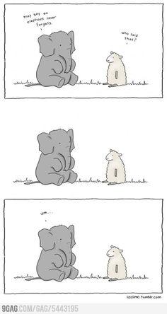 Elephant never forgets