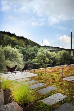 tapis sedum - garde corps - jardin en terrasse sur un toit - conception et realisation  www.vereal.lu