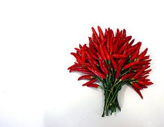 Know Your Herbs and Spices - Cayenne Peppers