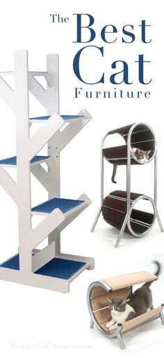 The Best Cat Furniture