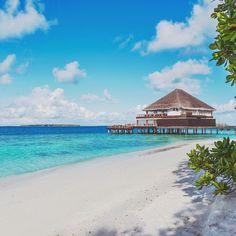 Swim in the turquoise lagoon or walk on the white sandy beach? #Maldives #DusitThaniMV #beach #sea #reef #lagoon #Benjarong