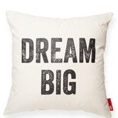 Found it at Wayfair - Expressive Dream Big Throw Pillow