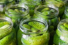 Homemade Dill Pickles  2 to 3 bunches of fresh dill  1/4 cup crab boil  2 bay leaves crushed  1 tablespoons whole black pepper corns  1/2 teaspoons coriander seeds  1 tablespoons dill seeds  1 teaspoon hot pepper flakes  10 pounds picking cucumbers (4 inches long with ends trimmed)  1 1/2 cups pickling canning salt  2 cups white vinegar  16 cups water  6 garlic cloves