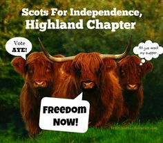 The campaign for Scottish freedom has been heated in the countdown to the referendum, so here are a few funny Scottish independence videos I've come across.