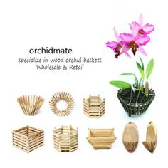 Ourwooden orchid plant baskets are designed to be deeper (taller) than the regular square Vanda baskets in the market, so that they can be used for many other orchids. Openings on the baskets facilitate drainage and air circulation that orchid roots need. Orchid Planters, Orchids Garden, Wood Basket, Plant Basket, Orchid Supplies, Hanging Orchid, Orchid Roots, Creation Art, Orchid Care