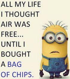 Here we have some of Hilarious jokes Minions and Jokes. Its good news for all minions lover. If you love these Yellow Capsule looking funny Minions then you will surely love these Hilarious jokes…More Funny Minion Pictures, Funny Minion Memes, Minions Quotes, Minions Pics, Minion Stuff, Evil Minions, Memes Humor, Funny Quotes With Pictures, Funny Images