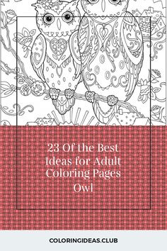 23 Of the Best Ideas for Adult Coloring Pages Owl . Coloring pages are no longer just for kids. Coloring books are marketing well in the grown-up market. Detailed Coloring Pages, Fairy Coloring Pages, Printable Adult Coloring Pages, Coloring Books, Punched Tin Patterns, Surface Art, Articles, Good Things, Fresh