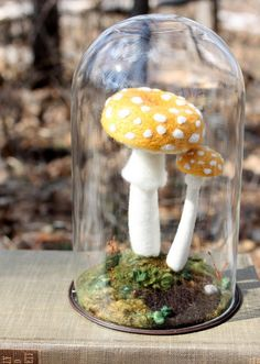 """A pair of yellow amanitas under glass.  They're made entirely of wool and sculpted together using a felting needle.   They're growing out of an old """"Physiology of the Fungi"""" textbook from 1951."""