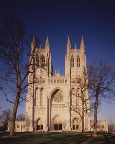 Washington National Cathedral  Washington, D.C.    Absolutely beautiful!! If you go to DC, definitely go see it!
