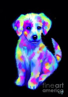 Colorful painted puppy by Nick Gustafson