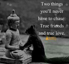 22 new ideas yoga quotes buddha buddhism Buddha Motivational Quotes, Buddha Quotes Love, Funny Positive Quotes, Yoga Quotes, Meaningful Quotes, Inspirational Quotes, Motivation Positive, Buddha On Love, Buddhist Quotes