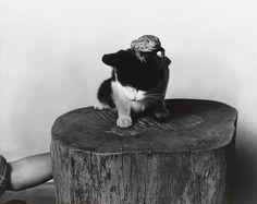 Barbara Morgan. Doug and Toad. 1942
