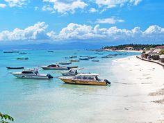 バリ島から30分 サンゴ礁とマングローブの森が広がるレンボンガン島のご紹介