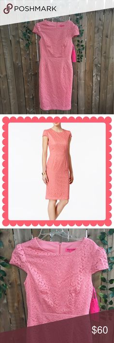 "🌸Beautiful pink lace Betsey Johnson dress 🌸 🌿Ultra feminine Pink lace betsey sheath dress.. dress is new w tags .. size 6 .. length of dress is 40.5"" from top of shoulder to bottom hem, 30"" across waist and approx 36"" across bust.. 🌿Beautiful summer dress for weddings or any other occasions . 🌸 offers always welcome 🌿 Betsey Johnson Dresses Midi"