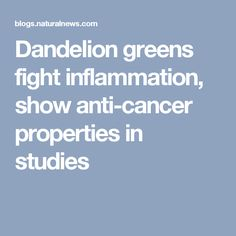 Dandelion greens fight inflammation, show anti-cancer properties in studies