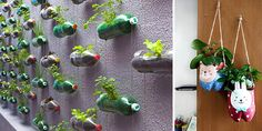 The garden of your home is a place where you can be very creative and you can show others how you can decorate your garden with your creativity. Here are 10 best creative do it yourself planter ideas from household items Diy Planters, Planter Ideas, Chandelier Picture, Curtains Pictures, Cherry Blossom Painting, Christmas Tree Pictures, Reuse Plastic Bottles, Diy Art Projects, Family Garden