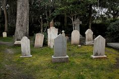 Simon's Island, Georgia-have wanted to visit here for SOOOOO long! St Simons Island Georgia, Georgia Islands, St Simon Island Ga, Old Cemeteries, Graveyards, Grave Headstones, Early Settler, Georgia Usa, Cemetery