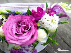 Liliac, Violet, Facebook, Rose, Plants, Pink, Plant, Roses, Planets