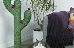 Bastel deiner Katze mal diesen stylischen Kaktus-Kratzbaum