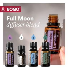 Hangover Essential Oils, Essential Oils 101, Essential Oils For Sleep, Essential Oil Diffuser Blends, Doterra Diffuser, Doterra Oils, Diffuser Recipes, Osho, Young Living