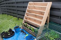 Vertical strawberry garden.. The husband would love this!!!