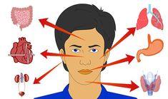 """Medicina chineză numește fața """"oglinda sănătății."""" Asta pentru că pielea de pe față reacționează într-un mod unic, atunci când vine vorba de schimbările care se petrec în organism. Hai să vedem ce reprezintă fiecare modificare de la nivelul feței și de ce anume trebuie să ținem cont! 1. Frunte și sprâncene Iritațiile de pe frunte sau de la nivelul sprâncenelor indică, de cele mai multe ori, afecțiuni gastrointestinale, iar pielea dintre sprâncene transmite că suferi de afecțiuni hepatice… Minion, Disney Characters, Fictional Characters, Disney Princess, Poster, Health, Medicine, Beast, Turmeric"""
