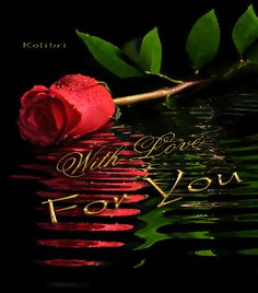 View album on Yandex. Most Beautiful Black Women, Beautiful Love Pictures, Beautiful Gif, Beautiful Roses, Pretty Pics, Rose Day Wallpaper, Animated Heart, Animated Gif, Good Morning Image Quotes