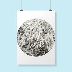 Stampa invernale nature inspirational wall art branches