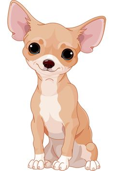 Sweet Chihuahua Más